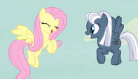 Fluttershy giddy giggle S5E1