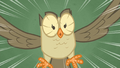 Owlowiscious hoots S4E23.png
