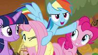 """Rainbow Dash """"go get 'em, beardy!"""" S9E2"""