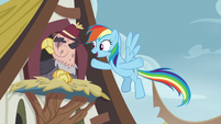"Rainbow Dash ""what are you waiting for?"" S8E2"