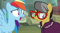 "Rainbow Dash ""you're giving up writing stories"" S7E18"