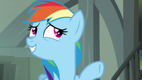 Rainbow Dash -I'd be worried about her, too- S4E04