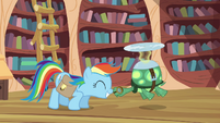 Rainbow Dash and Tank nosekiss S03E11 (1)