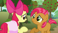 Apple Bloom 'we were tryin' to get you back for bein' a big bully' S3E04.png