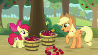 "Applejack ""looks like those Seedlin' tracks"" S9E10"