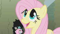 Fluttershy -not at all- S2E01