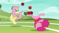 Fluttershy and Pinkie continue to have fun S6E18.png
