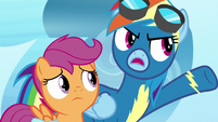 "Rainbow Dash ""talked to Twilight or something!"" S7E7"