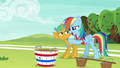 "Rainbow Dash ""with you on the team"" S6E18.png"
