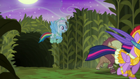 Rainbow Dash flies out of the cave S5E21