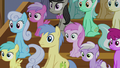 Audience of ponies with blank stares S6E4.png