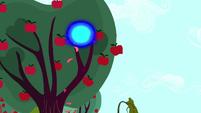 Blue sphere of light in an apple tree S5E13