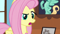 """Fluttershy """"so you just quit?"""" S6E11.png"""
