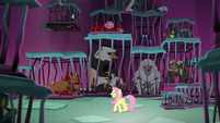 Fluttershy addressing the creatures S8E26