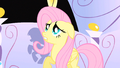 Fluttershy all this attention S1E20.png