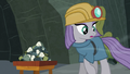Maud Pie sees one of her rocks roll away S7E4.png
