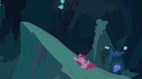 Pinkie Pie clone sliding down S3E03