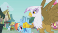 Rainbow Dash 'later' S1E05.png