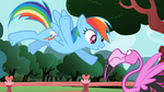 Rainbow Dash 'that's it' S2E07