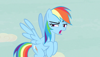Rainbow Dash --thanks a lot, map-- S5E1
