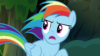 Rainbow Dash -quit and retire out of the blue!- S7E18