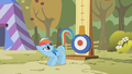 Rainbow Dash about to kick S1E13.png