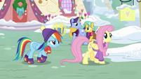 Rainbow Dash follows Fluttershy around MLPBGE