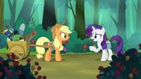Rarity -anything in that wagon for mane maintenance-- S8E13