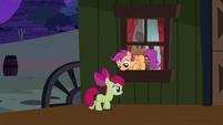 S05E06 Apple Bloom i Scootalo wyskakują przez okno
