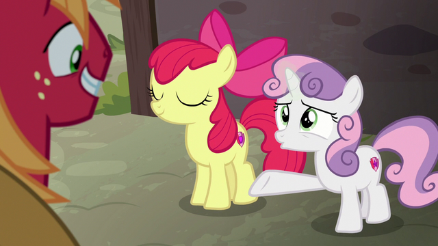 """File:Sweetie Belle """"you're gonna be her hero!"""" S7E8.png"""