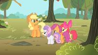 Applejack 'Cutie Mark Crusaders' S1E18