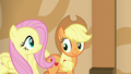 Applejack and Fluttershy happily follow Gladmane S6E20.png