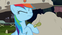 Bag lifted off of Rainbow Dash S6E13