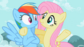 Fluttershy 'I have...' S2E07.png