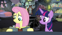 Fluttershy -dedicate my life to curing ponies- S7E20