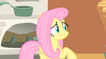 Fluttershy distrusts the CMC S1E17
