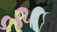 Fluttershy finds Twilight S01E17