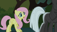 Fluttershy finds Twilight S01E17