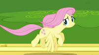Fluttershy flying 2 S2E22