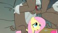 Fluttershy wondering what to do S1E19.png