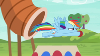 Rainbow flies out of the obstacle tunnel S6E18