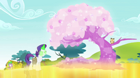 Rarity turns tree into crystal tree S4E23
