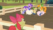 S02E05 Apple Bloom patrzy na zawodniczki