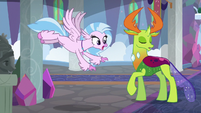 Silverstream chasing after Ocellus S8E1