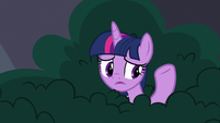 """Twilight """"I used to live in a library"""" S9E5"""
