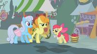 Apple Bloom vendendo maçãs para Golden Harvest e Shoeshine T1E12