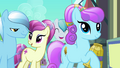 Crowd of ponies happy S3E2.png