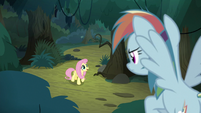 Fake Rainbow looks down at Fluttershy S8E13