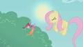 Fluttershy disgusted S01E07.png