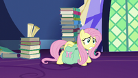 Fluttershy strains under the weight of her bags S5E23